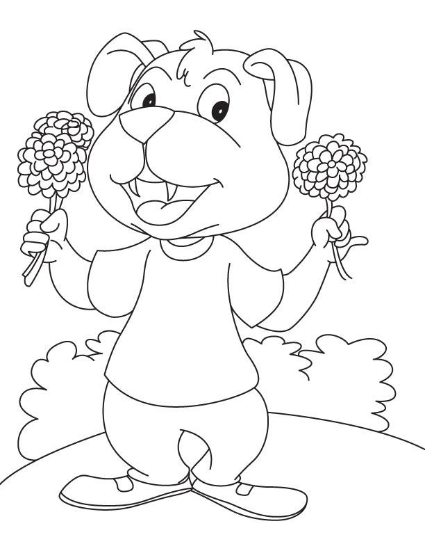 Dog showing decorative flower