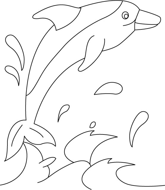 Daisy dolphin coloring pages