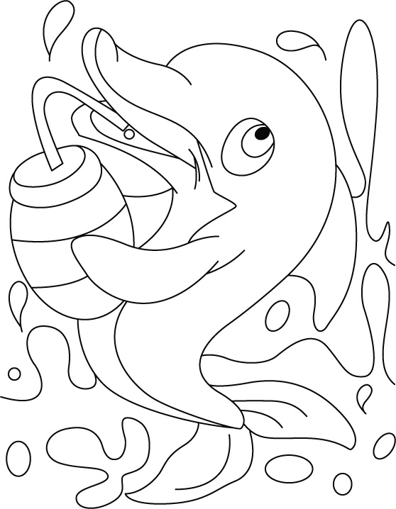 Dolphin sip which drink coloring pages