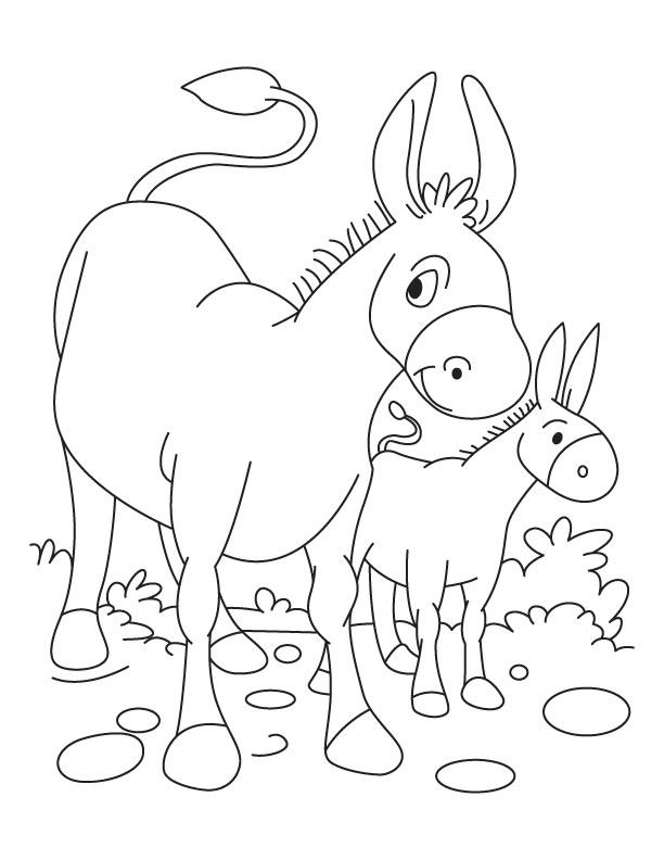 Donkey and Foal coloring page Download Free Donkey and Foal