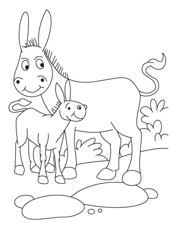 Donkey with foal coloring pages