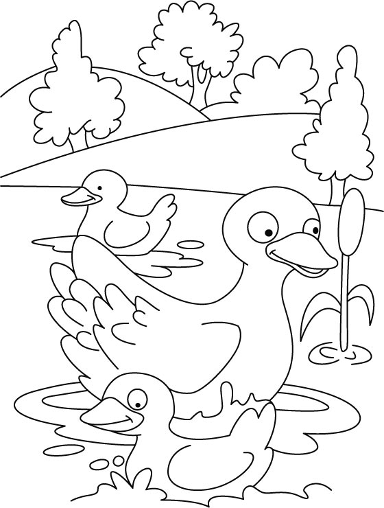 Five Little Duc Colouring Pages