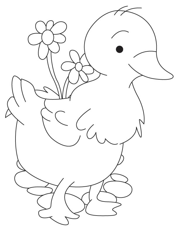 Duckling in the garden coloring page