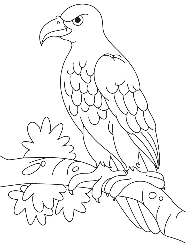 An Angry Eagle Sitting On A Branch Coloring Page