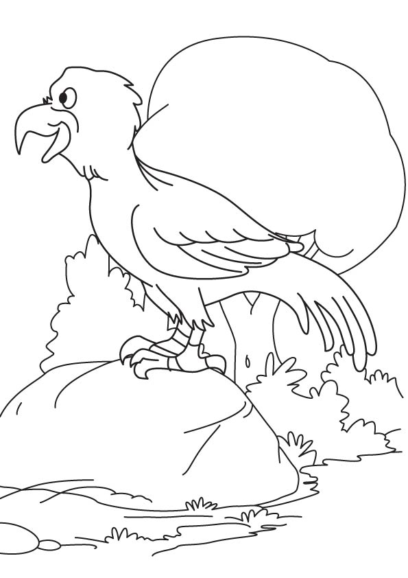 Eagle on the rock coloring page