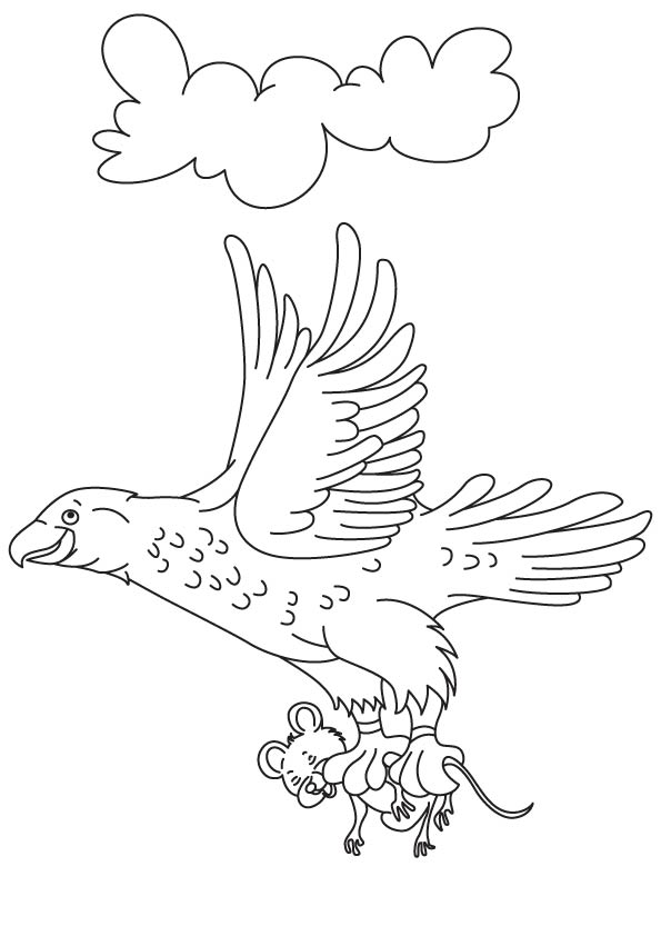 Eagle with its prey coloring page download free eagle for Birds of prey coloring pages