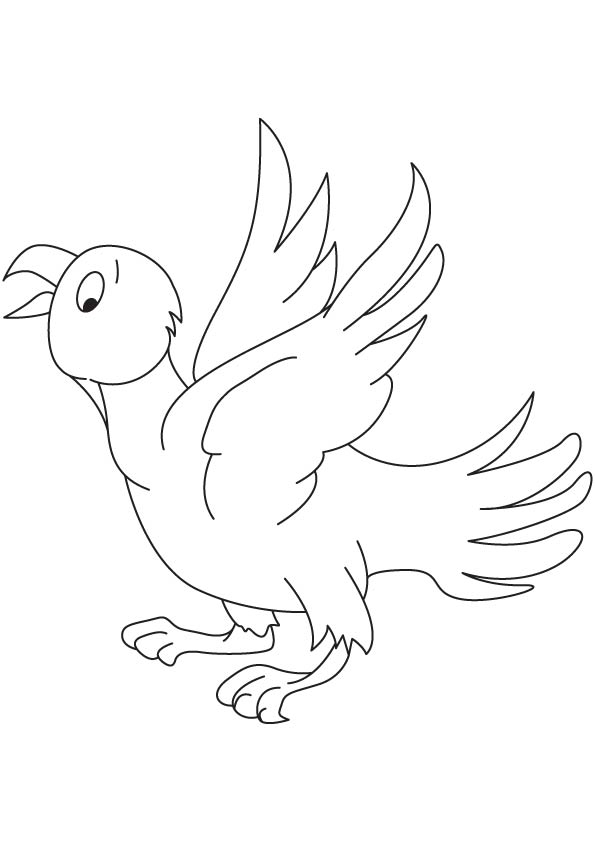 Eaglet coloring page