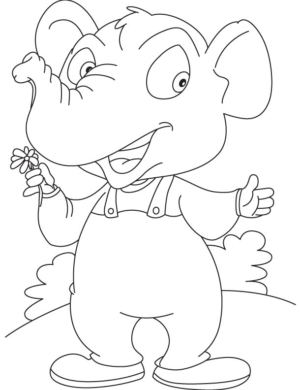 Elephant and daisy coloring page