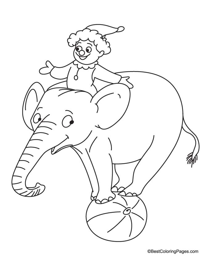 Elephant balancing on ball coloring page