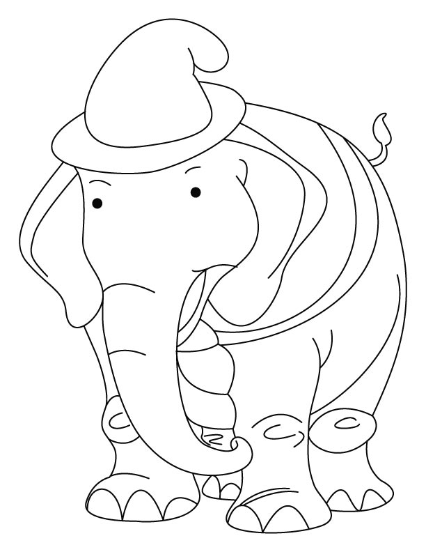 Elephant wearing the hat coloring page