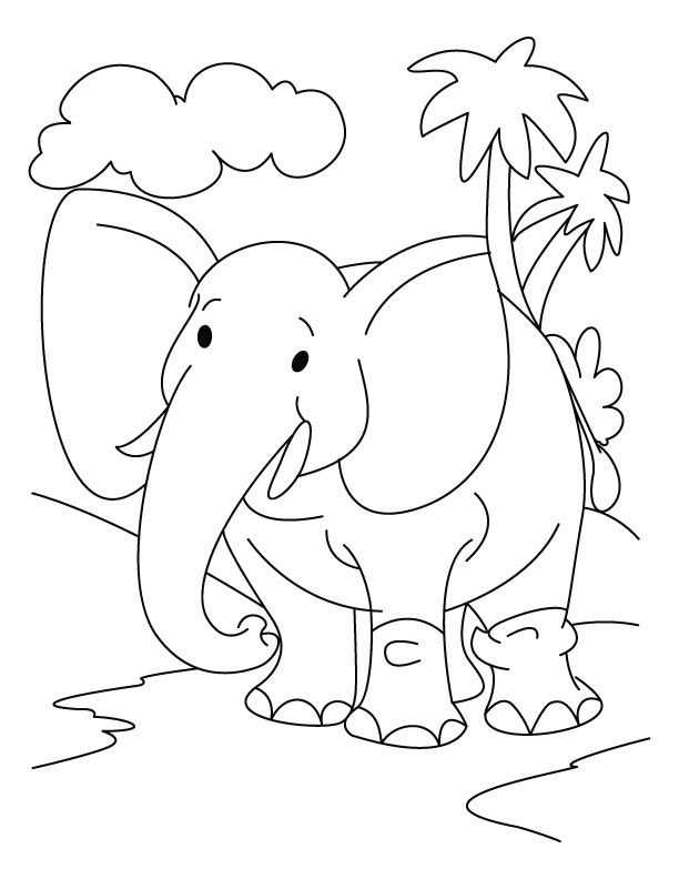 Elephant in the jungle coloring page
