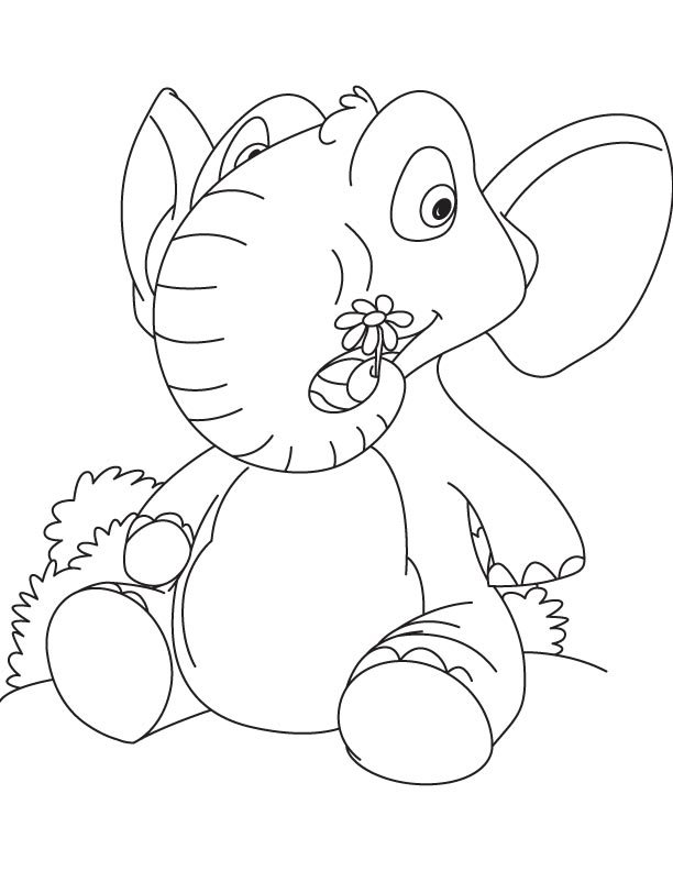Elephant holding daisy coloring page