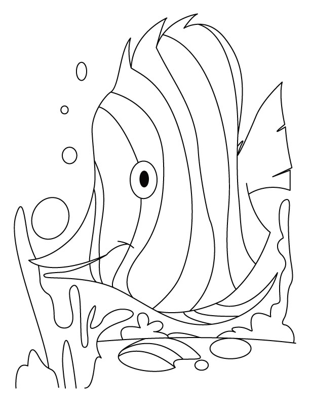 Fish dive coloring pages