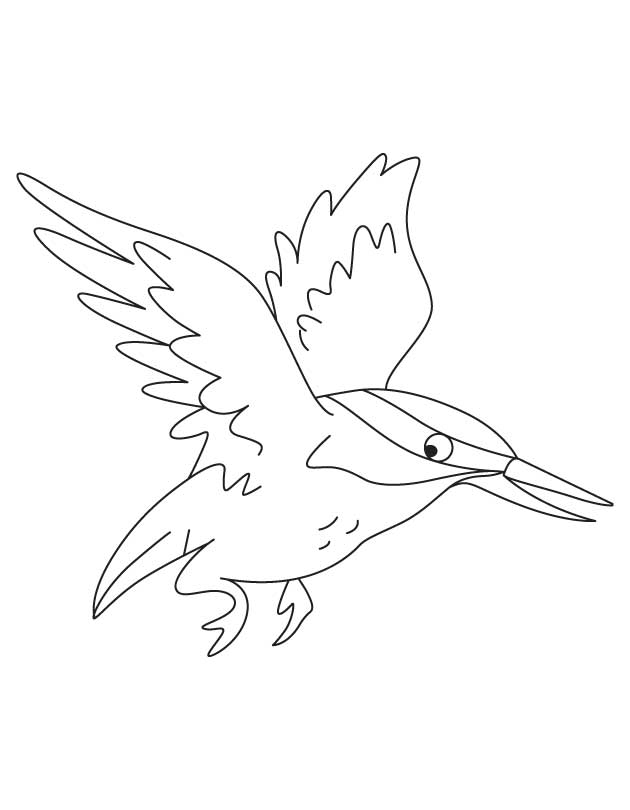 Flying kingfisher coloring pages Download Free Flying kingfisher