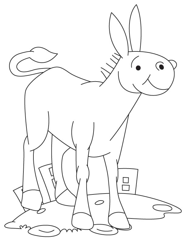 Foal in city coloring page