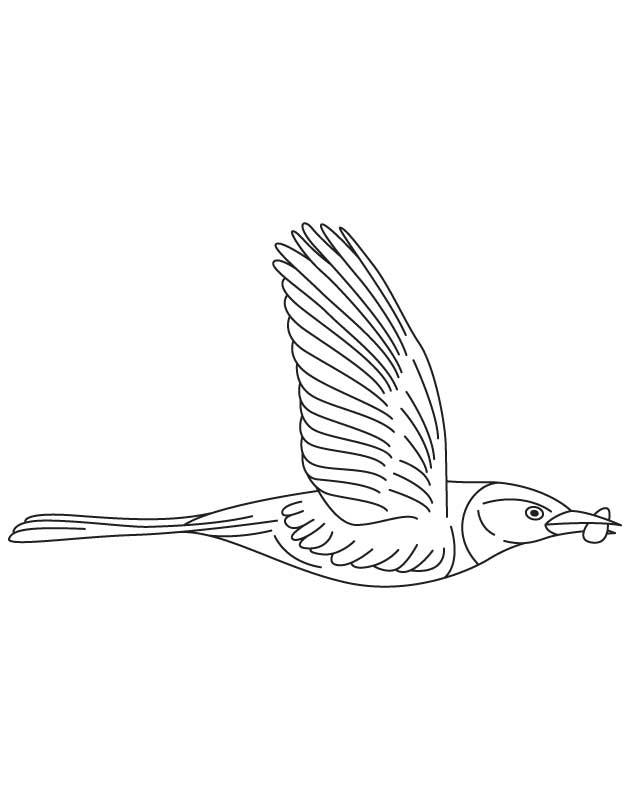 Food in beak coloring page