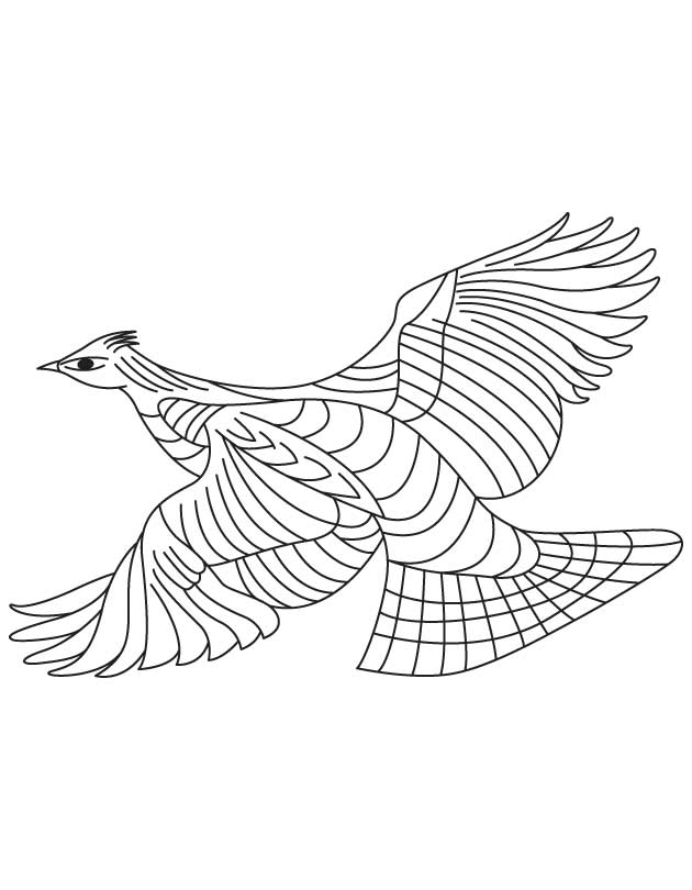 Forest living grouse coloring page Download Free Forest living