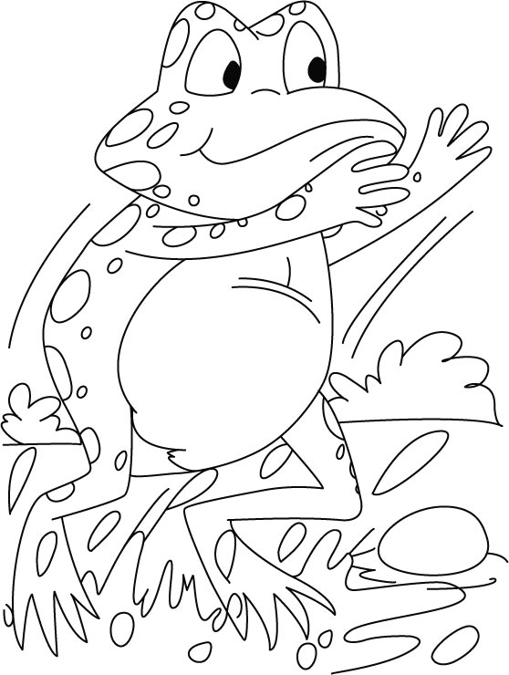 Startling frog coloring pages