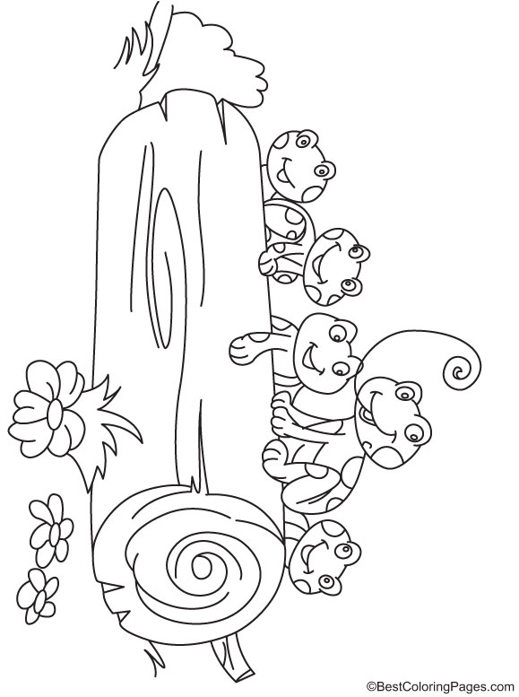 frogs behind the log coloring page download free frogs