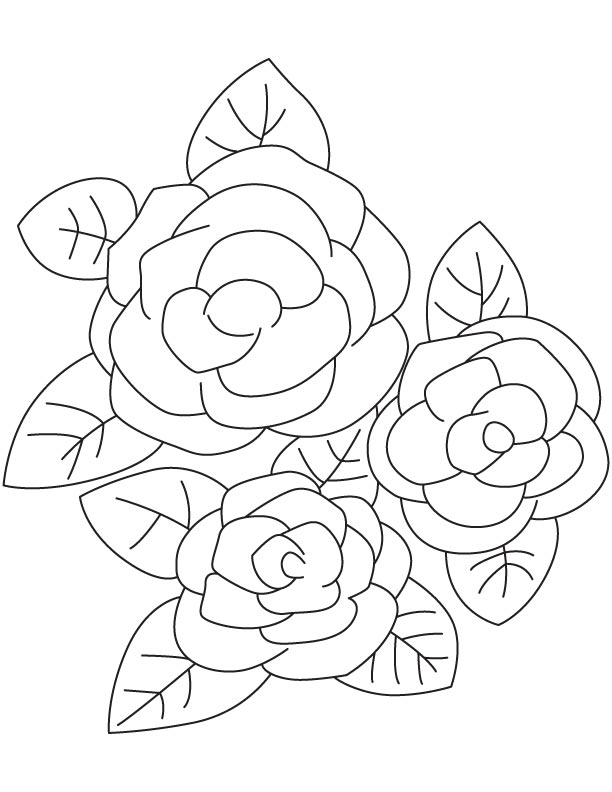 97 Gardenia Flower Online Coloring Page