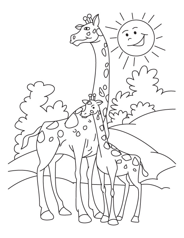 Giraffe With Calf Coloring Pages