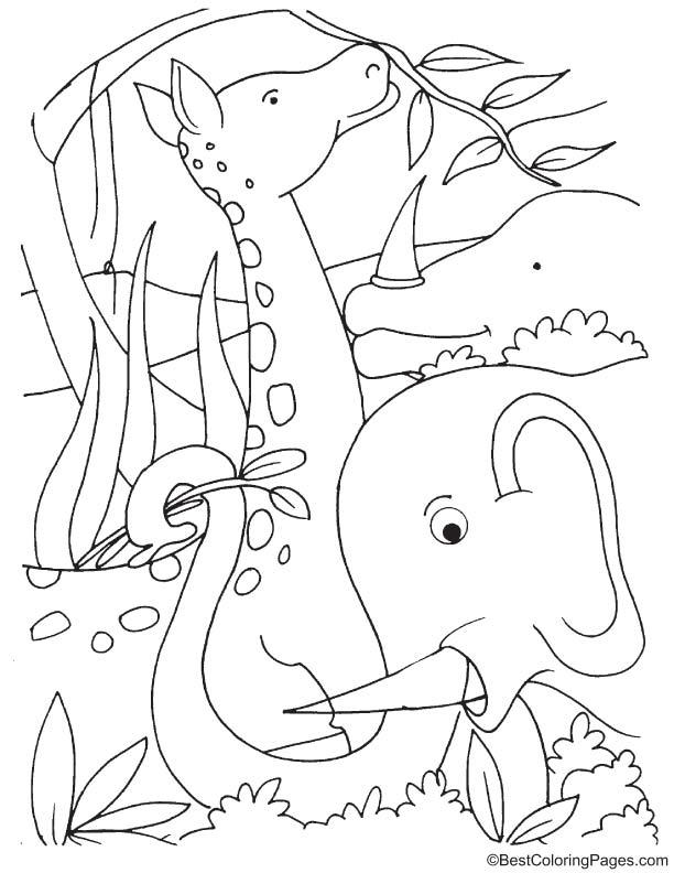 Giraffe and elephant in jungle