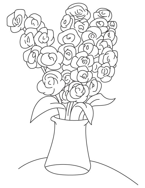 Gladiolus alatus coloring page