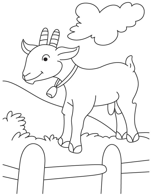 Goat in fence coloring page