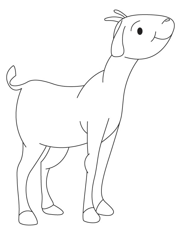 Goat kid coloring page