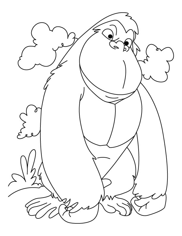 Winner gorilla coloring pages