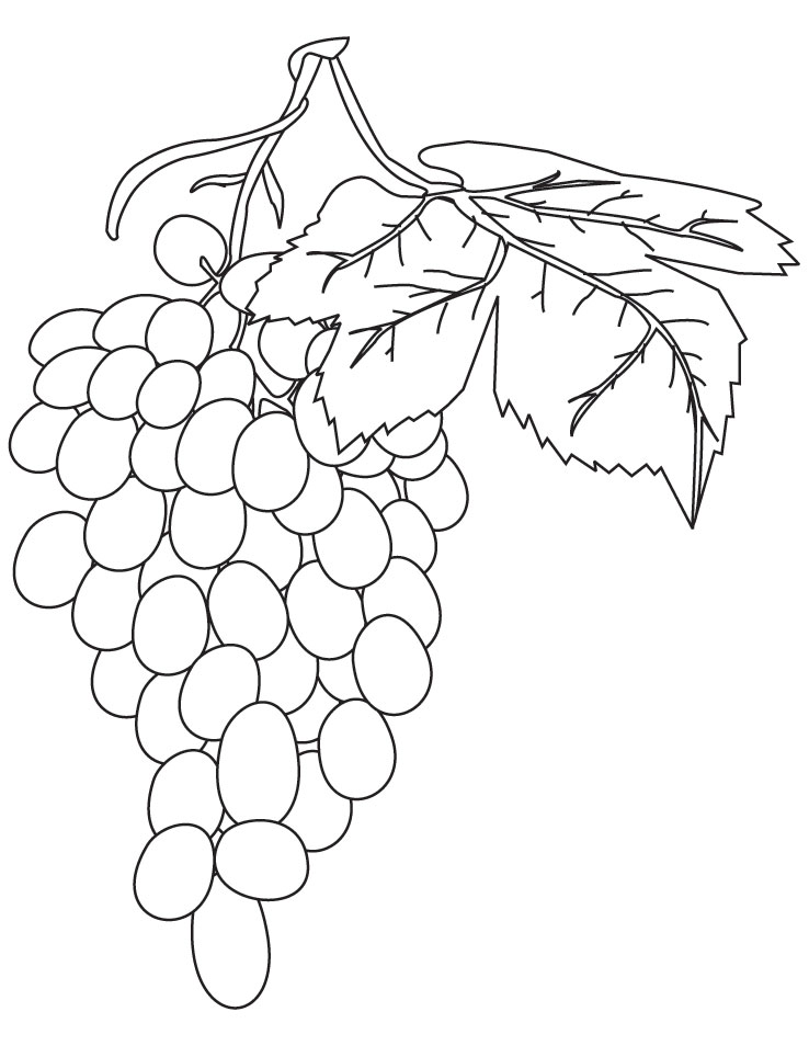 Red grapes coloring pages Download
