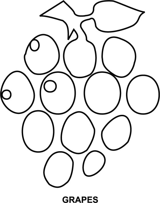 Grapes Coloring Page - Grapes Clipart For Coloring , Free ... | 709x560
