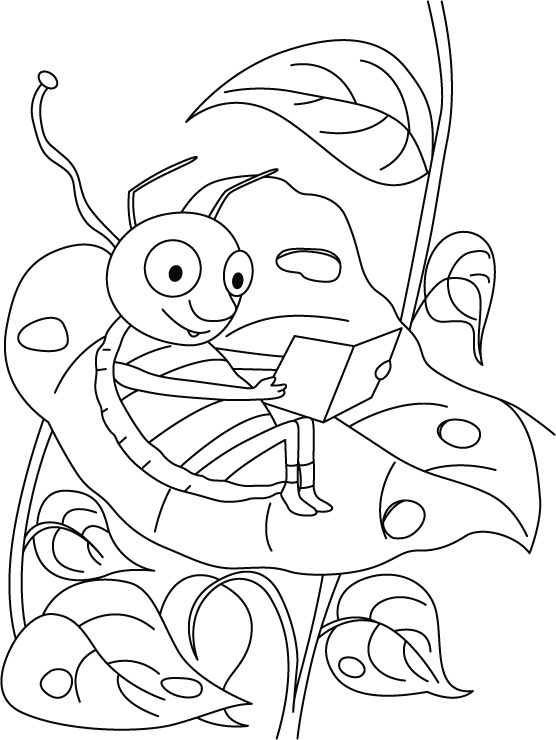 Grasshopper Carrying Field Research Coloring Pages