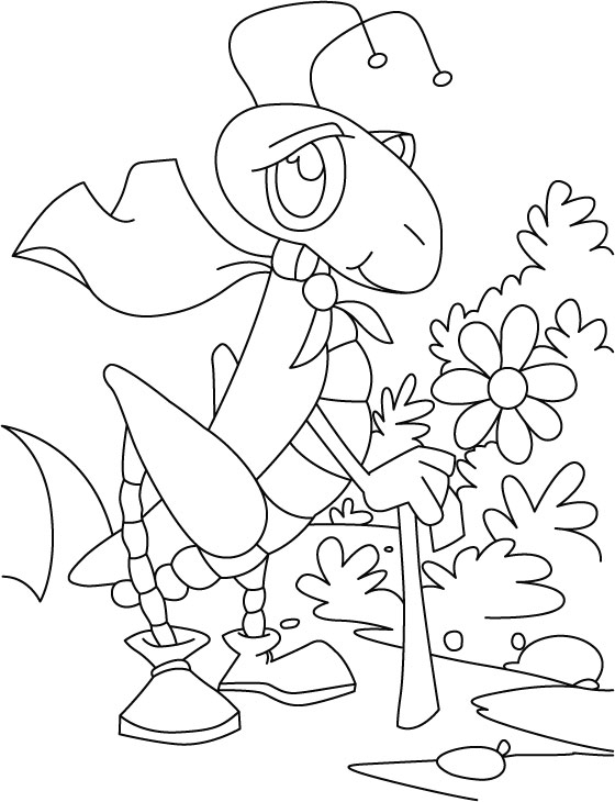 Grasshopper scrawling in garden coloring pages