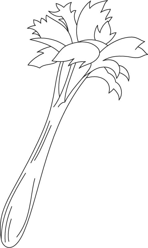 Growing celery coloring page
