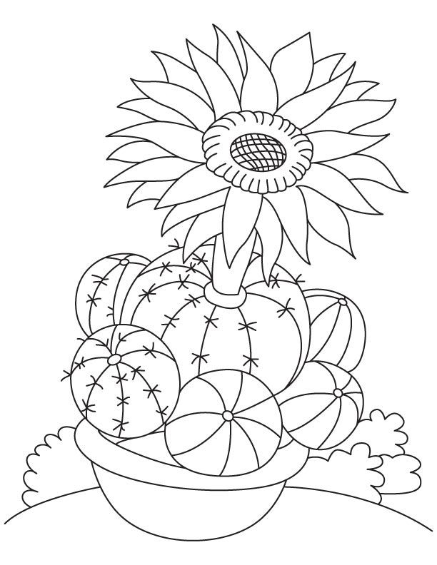free cactus flower coloring pages