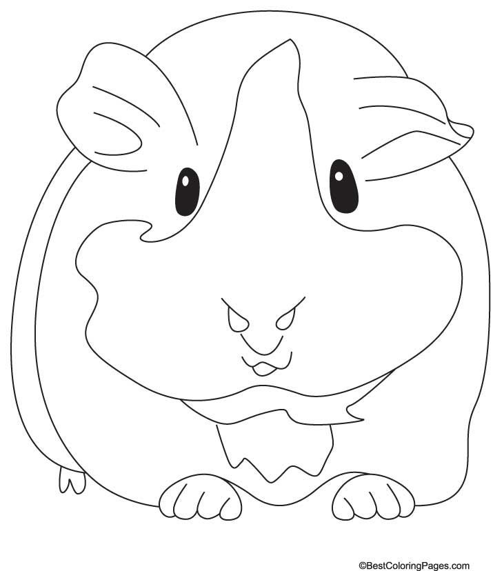 free coloring pages of pigs - photo#26