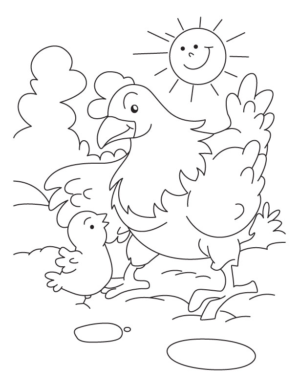 Chicken With Mother Hen Coloring Pages