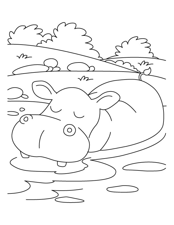 Hippopotamus in relaxing mood coloring pages