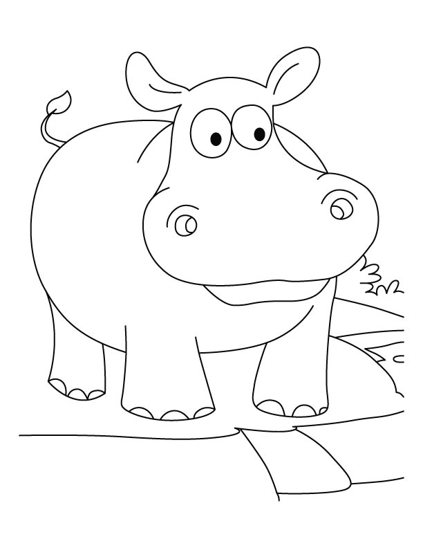 Funny hippopotamus coloring pages