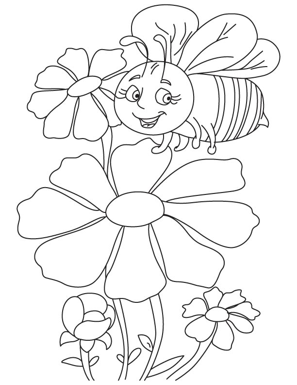 Honeybee on cosmos coloring page