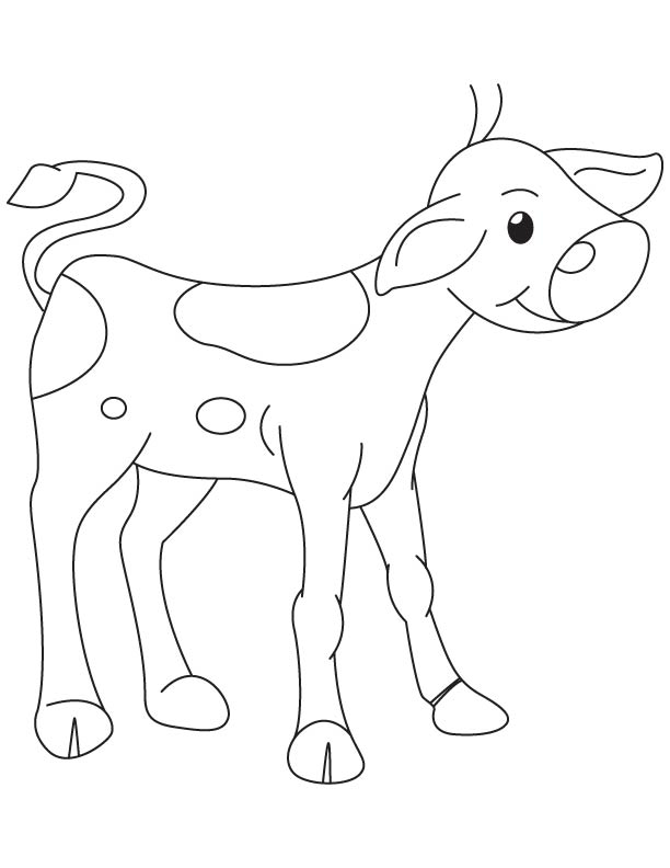 Innocent calf coloring page