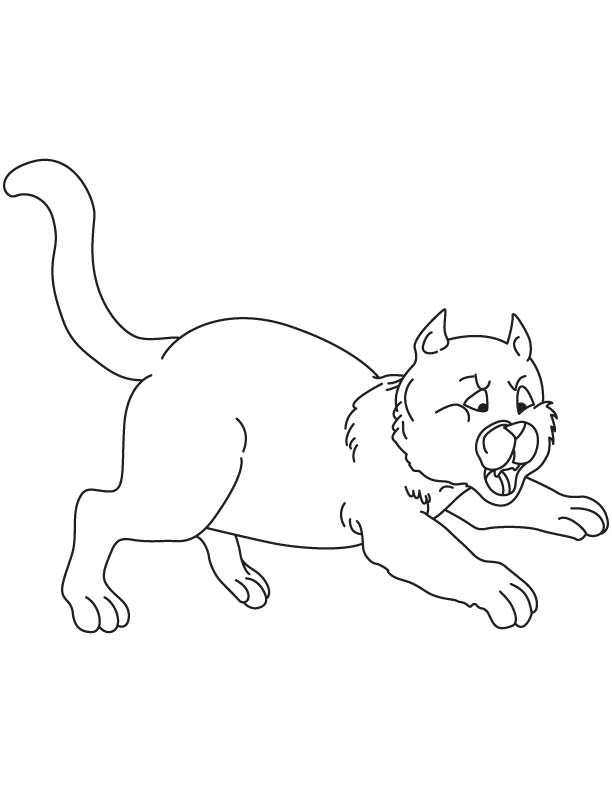 Jumping cat coloring page