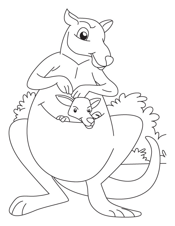 kangaroo animal coloring pages. Kangaroo and Joey coloring pages  Download Free