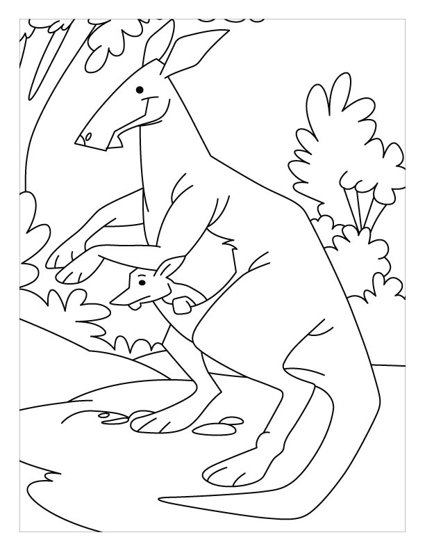 Hip Hop Kangaroo Coloring Pages Page