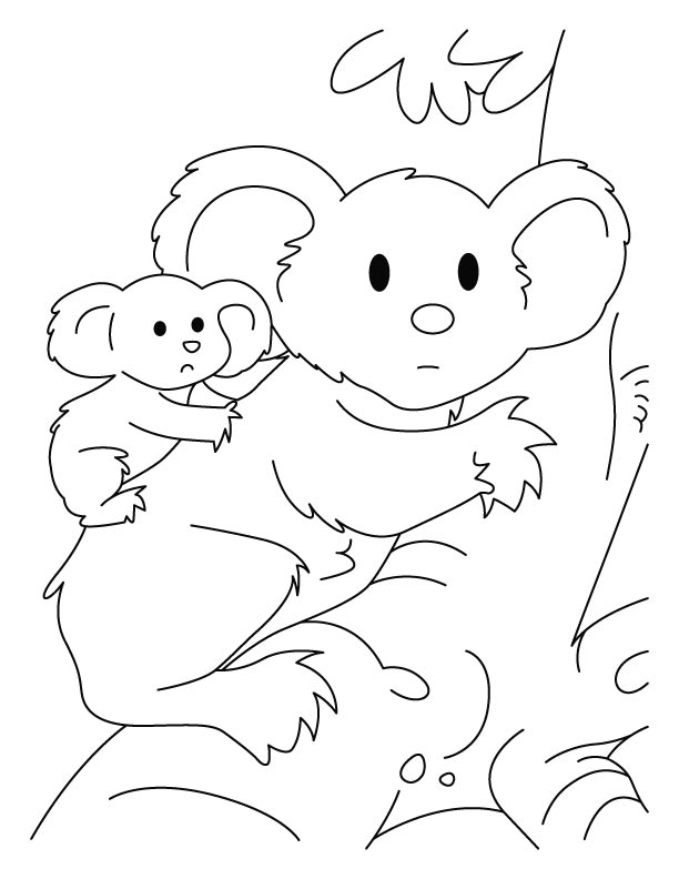 Koala with joey coloring pages