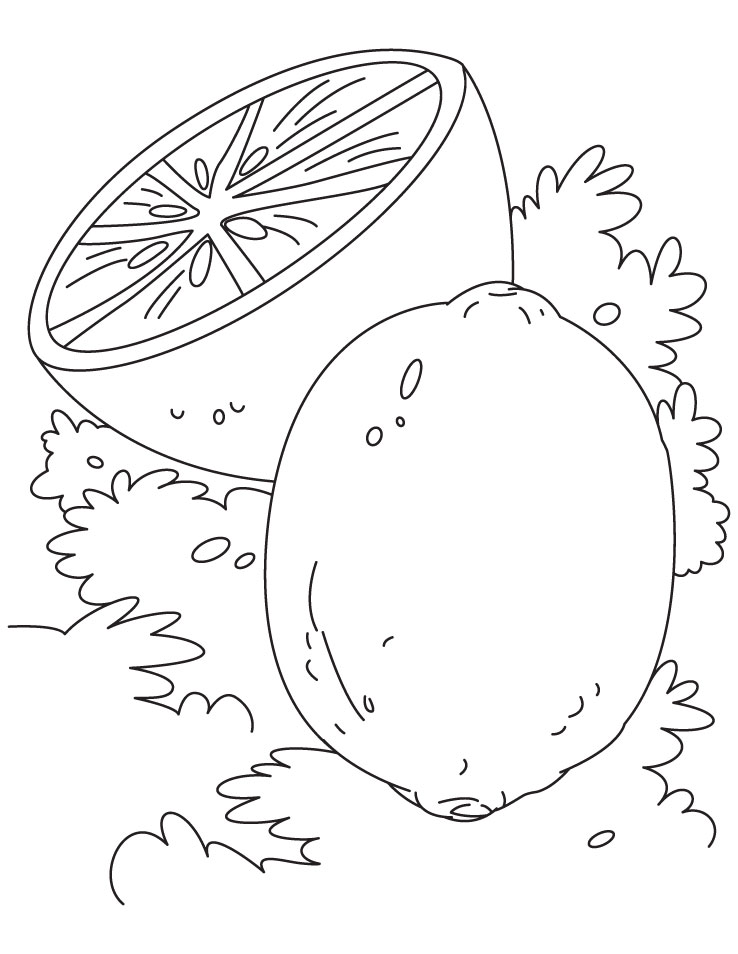 lime and lemon coloring pages