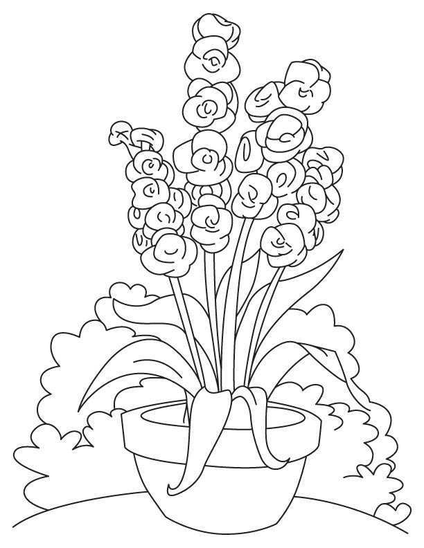 Long gladiolus flower coloring page
