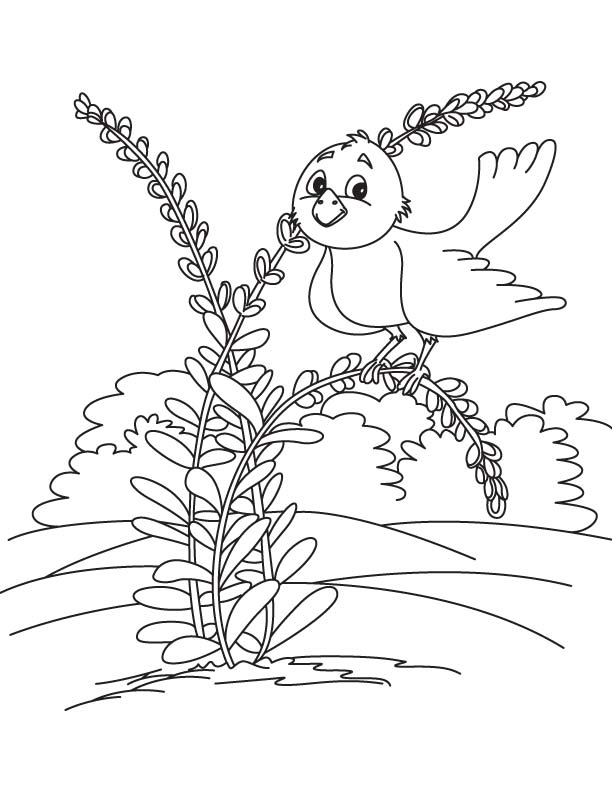 Loving bird coloring page