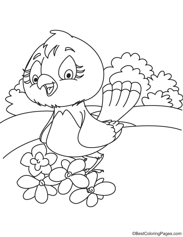 Magnolia and bird coloring page